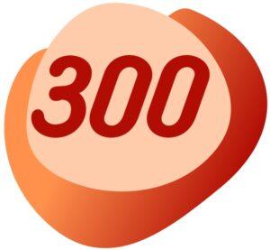 bono internacional 300 telefonia virtualtwin